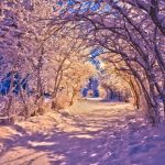 Самарик и Зима